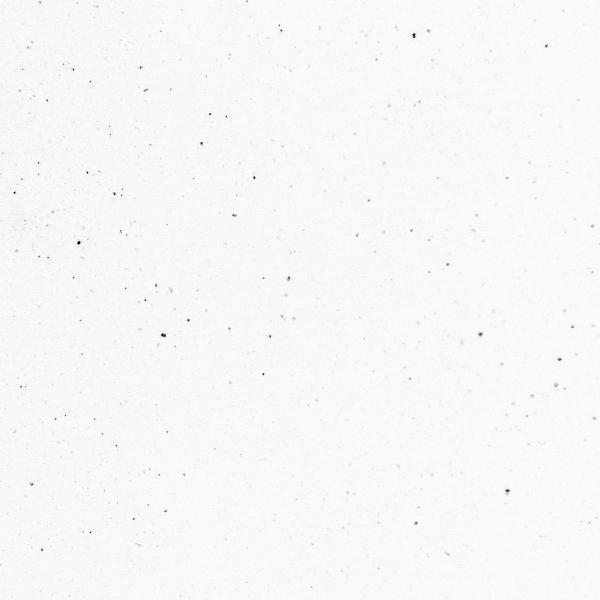 White Galaxy - Gloss